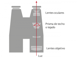 Binoculares de techo o tejado