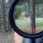 visor de caza