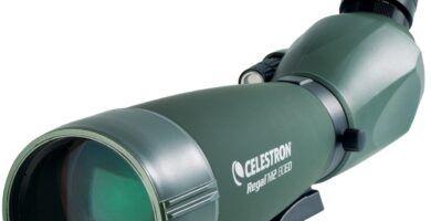 telescopio Celestron Regal M2 20-60 x 80 Spektiv